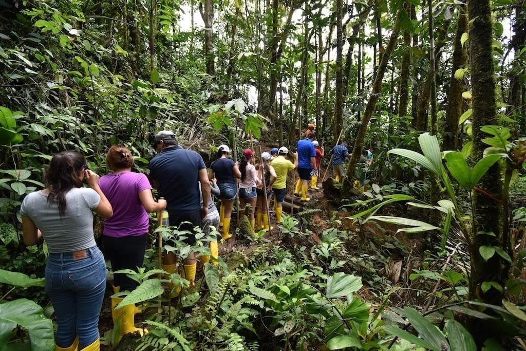 Selva Ecuador